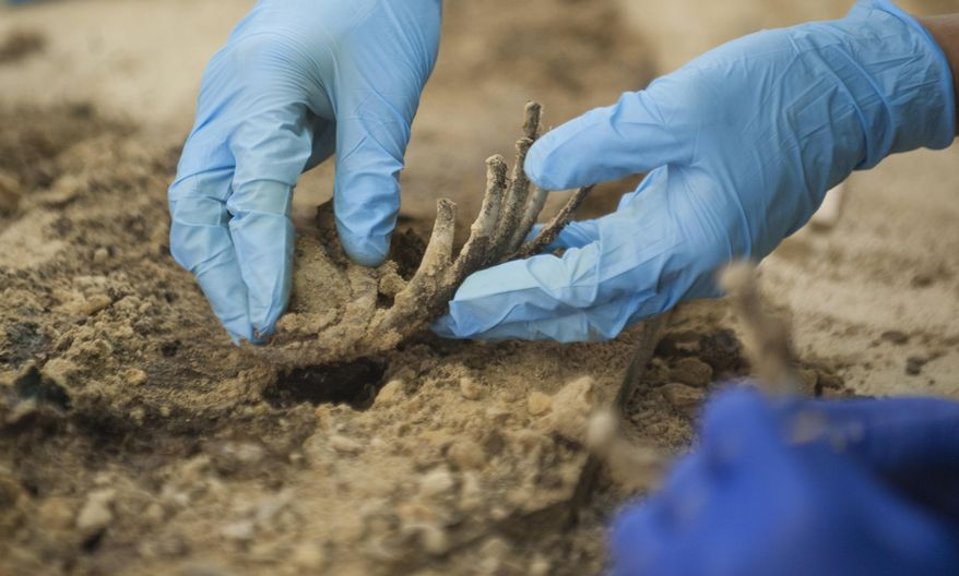 In this Monday, July 17, 2017 photo, University of Pennsylvania masters student Jason Hammer excavates a rib cage from a juvenile in one of the coffins discovered at a construction site in Philadelphia's Old City, as the remains are fully dug from their coffins and examined at a facility in Burlington County, N.J. (Chris LaChall/Camden Courier-Post via AP)