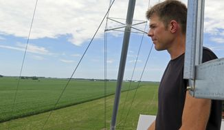 Scott Haase, a farmer in Blue Earth, Minn., looks out at a field where he planted cover crops between rows of corn on July 5, 2017.  Miles from the farmers markets, craft breweries and farm-to-table restaurants of the Twin Cities, more traditional farmers are thriving in the Midwest. Corn and soybean farmers face heightened expectations for environmental stewardship and want to build healthy soils that can withstand heat, drought and heavy rain.   (Elizabeth Dunbar /Minnesota Public Radio via AP)