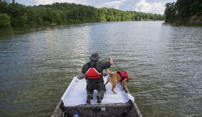 In a June 21, 2017 photo, Ohio Department of Natural Resources Officer Jason LaGore guides his 2-year-old labrador retriever, Sarge, to search for human remains during a training session at Caesar Creek State Park in Waynesville, Ohio. During these training sessions, the dog is rewarded with a toy for successfully finding the remains which LaGore planted in the lake. [Adam Cairns/Dispatch]/The Columbus Dispatch via AP)