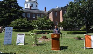 Lt. Gov. Boyd Rutherford speaks at the dedication of a Liberty Tree on the grounds of the Maryland State House in Annapolis on July 31, 2017. (Boyd Rutherford/Facebook)