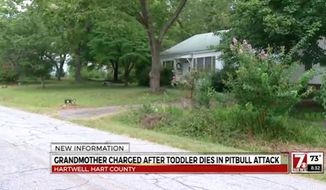A Hartwell, Georgia, grandmother is charged with second-degree murder after her two pit bulls killed her 21-month-old grandson while she was babysitting. (WSPA)