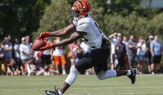 Cincinnati Bengals wide receiver John Ross catches a pass during NFL football training camp, Sunday, July 30, 2017, in Cincinnati. (AP Photo/John Minchillo)