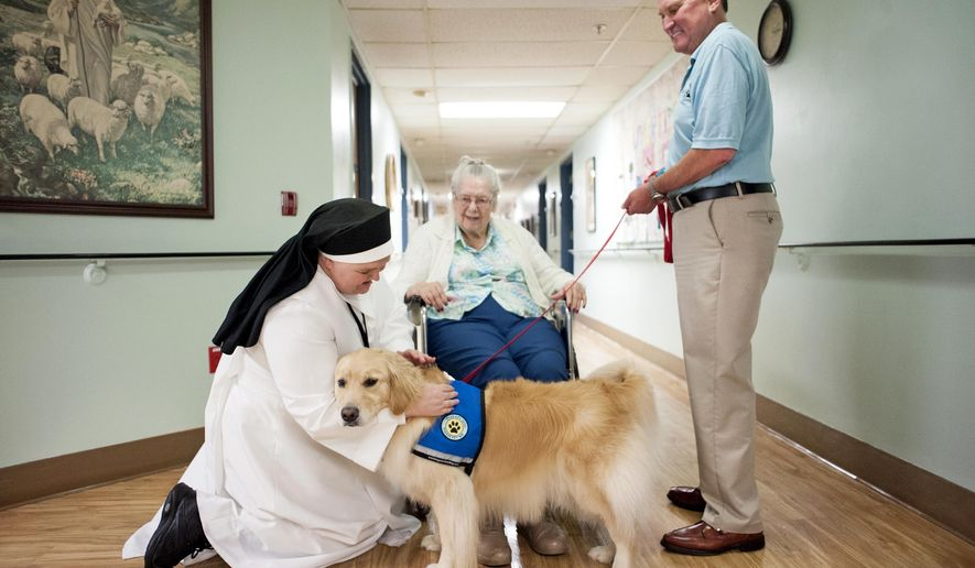 ADVANCE FOR RELEASE SATURDAY, AUGUST 5, 2017 Bill Schendt, right, holds Miracle's leash while she greets Dorothy Ervs, center, in the hallway, Wednesday, July 19, 2017, at St. Elizabeth Nursing Home in Janesville, Wis. (Angela Major/The Janesville Gazette via AP)