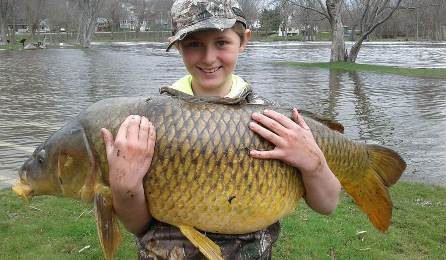 This April 22, 2017 photo released by John Stokes shows Stokes' son Chase, then 10, holding a giant carp, weighing 33.25 pounds, in Ferrisburgh, Vt. The Vermont Fish & Wildlife Department made the record official a few weeks ago, stating that the fish was a quarter-pound bigger than the previous record holder. (John Stokes via AP)