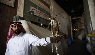 FILE- In this Sunday, Jan. 16, 2011file photo, a man shows his pet falcon at a Doha's Souq Waqif, Qatar. Qatar is scrapping visa requirements for visitors from 80 countries as it weathers a boycott by its neighbors and gears up to host the World Cup in 2022. (AP Photo/Kin Cheung, File)