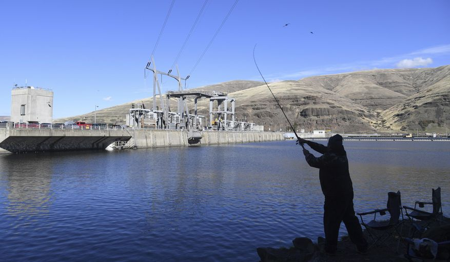In this Oct. 19, 2016, file photo, a man fishes for salmon in the Snake River above the Lower Granite Dam in Washington state. (Jesse Tinsley /The Spokesman-Review via AP, File)