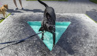 """Jax Reilly, a black labrador, cools off in Eleanna Anagnos' """"Penumbra Oasis"""" at Dogumenta (I) NYC, Friday, Aug. 11, 2017, in New York. The art show, featuring 10 sculptures and installations created specifically for dogs, will be on display at Brookfield Place in Lower Manhattan from Aug. 11 through 13. (AP Photo/Mary Altaffer)"""