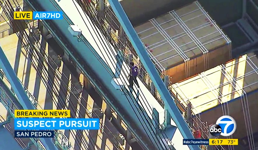 This frame from video provided by KABC-TV shows a man atop a container loading crane at the Port of Los Angeles, where he climbed after an hours-long high-speed police pursuit of his vehicle in Los Angeles, Wednesday, Aug. 16, 2017. The man left his car, climbed to the top of the crane and was sitting there as darkness approached. (KABC-TV via AP)