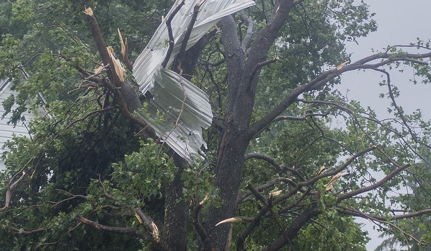 Debris from a farm building was blown into a tree at a farm residence in rural New Sweden Township after a tornado struck the area, Wednesday, Aug. 16, 2017.  (Jackson Forderer/The Free Press via AP)