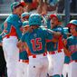 The Venezuelan team might not have reached the Little League World Series if not for the support of a couple of major league players from their home country. (Associated PRess)