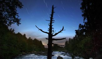 In this Wednesday, Aug. 9, 2017 photo, a dead spruce tree stands on the shore of the East Branch of the Penobscot River in this time exposure in the Katahdin Woods and Waters National Monument near Patten, Maine. Interior Secretary Ryan Zinke wants to retain the newly created Katahdin Woods and Waters National Monument in northern Maine, but said he might recommend adjustments to the White House on Thursday, Aug. 24, 2017. (AP Photo/Robert F. Bukaty)