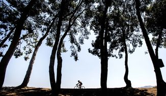 A cyclist is framed between the trees during an afternoon ride along the Santa Ana River Trail in Anaheim, Calif., on Thursday, Aug. 24, 2017. (Mark Rightmire/The Orange County Register via AP)
