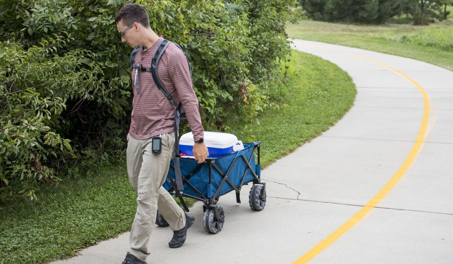 Kyle Dougherty surveys for fox scat on Tuesday, Aug. 15, 2017, on the Rock Island Trail in south Lincoln, Neb.   Dougherty is marking and studying fox scat as part of his master's degree research project. He is looking for fox scat to indicate the relative abundance of foxes in areas across the city.  (Amber Baesler/The Journal-Star via AP)