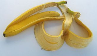 A Greek life camping retreat sponsored by the University of Mississippi over the weekend was canceled after a group of black students discovered a discarded banana peel in a tree. (Wikimedia Commons)