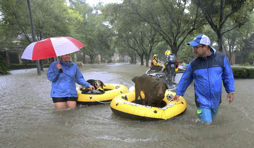 """FILE - In this Aug. 28, 2017 file photo, residents and pets are evacuated from their homes as floodwaters from Tropical Storm Harvey rise in Houston. Animal Planet is airing a special Saturday night called """"Surviving Harvey: Animals After the Storm."""" The program airs Saturday at 8 p.m. on the East and West coasts. (Godofredo A. Vasquez/Houston Chronicle via AP, File)"""