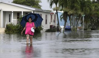 This June 7, 2017 file photo shows Peggy Wallace walking near her flooded neighborhood in Davie, Fla. With Hurricane Irma bearing down on Florida, an Associated Press analysis shows that the number of federal flood insurance policies written in the state has fallen by 15 percent. (AP Photo/Lynne Sladky, File)