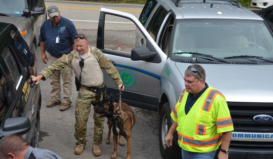 In this Thursday, Sept. 7, 2017 photo, searchers use a dog as they prepare to search a remote area of Wetzel County near Jacksonburg W.Va., after a small plane went missing missing Tuesday. Bridgeport police Chief John Walker said another plane was able to spot the missing aircraft in a mountainous area but searchers hadn't reached the site by Thursday evening(Darlene Swiger/The Exponent via AP)
