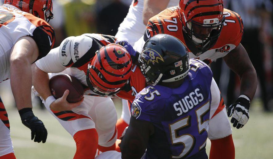 Baltimore Ravens outside linebacker Terrell Suggs (55) sacked Cincinnati Bengals quarterback Andy Dalton, center left, in the second half of an NFL football game, Sunday, Sept. 10, 2017, in Cincinnati. (AP Photo/Gary Landers)