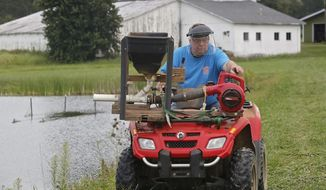 """In this Sept. 5, 2017, photo, Don Maloney operates his """"shrimp shooter,"""" also known as """"meals on wheels,"""" on his rural property in Fairfield County near Lancaster, Ohio, feeding fresh water prawns. The Ohio man's """"novelty thing"""" has turned into a lucrative part-time job growing freshwater prawns on his central Ohio farm. (Tom Dodge/The Columbus Dispatch via AP)"""