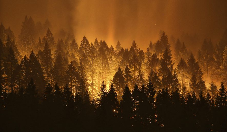 """FILE - In this Sept. 5, 2017, file photo, the Eagle Creek wildfire burns on the Oregon side of the Columbia River Gorge near Cascade Locks, Ore. Wildfires that have blackened more than thousands of square miles across the American West have also ignited calls, including from Interior Secretary Ryan Zinke, for thinning of forests that have become so choked with trees that they're at """"powder keg levels."""" (Genna Martin /seattlepi.com via AP, File)"""
