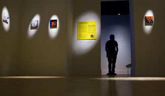 "In a Friday, Sept. 15, 2017 photo, Kendall College of Art and Design student, Samuel Lee, stands near John Naccarato's ArtPrize entry ""DAY for NIGHT"" at The Fed Galleries @ KCAD, Kendall College of Art and Design, in Grand Rapids, Mich. ArtPrize Nine starts Wednesday in Grand Rapids and runs through Oct. 8.  (Cory Morse/The Grand Rapids Press via AP)"