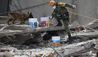 A Mexican soldier guides his rescue dog on a felled office building brought down by a 7.1-magnitude earthquake, in the Roma Norte neighborhood of Mexico City, Sunday, Sept. 24, 2017. As rescue operations stretched into day 6, residents throughout the capital have held out hope that dozens still missing might be found alive. (AP Photo/Moises Castillo)