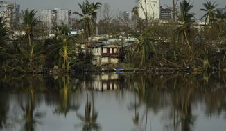 Trees are reflected in the water in the Buena Vista community in the aftermath of Hurricane Maria in San Juan, Puerto Rico, Sunday, Sept. 24, 2017. (AP Photo/Carlos Giusti)