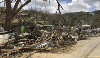 This undated photo provided by Hector Alejandro Santiago shows his farm in Barranquitas, Puerto Rico, destroyed by September 2017s Hurricane Maria. For 21 years Santiago raised poinsettias, orchids and other ornamental plants which were sold to major retailers including Costco, Walmart and Home Depot. In a matter of hours Maria wiped it away. (Héctor Alejandro Santiago via AP)