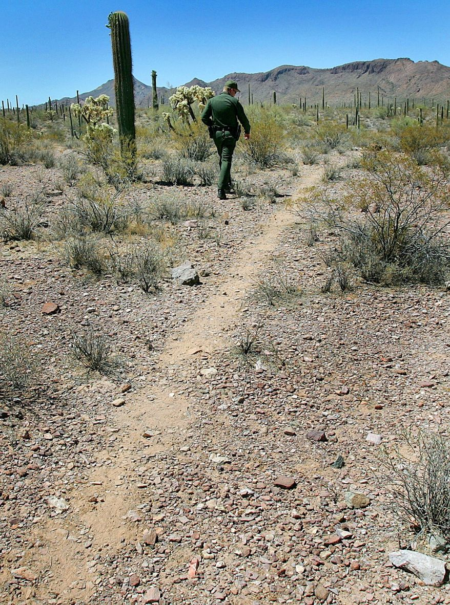 A U.S. Border Patrol agent surveys a trail cut by illegal immigrants in Organ Pipe Cactus National Monument. The number of agents in Arizona doubled from 2004 to 2014. (Associated Press)