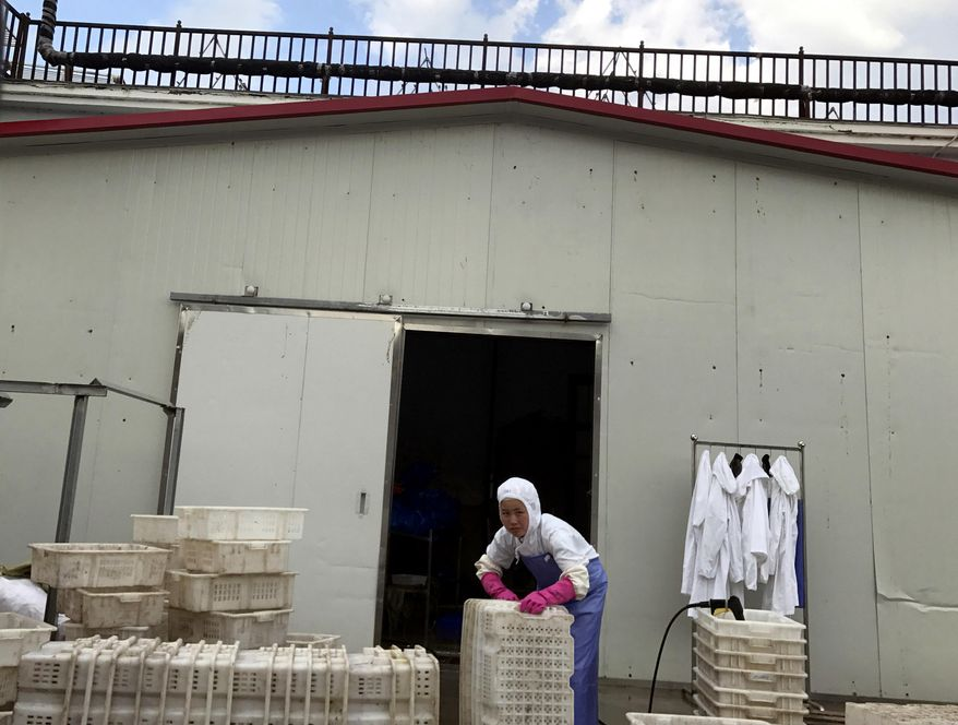 In this Sept. 2, 2017, photo, a worker stacks crates at the Yanbian Shenghai Industry & Trade Co. Ltd., which hires some North Korean workers to process seafood in the city of Hunchun in northeastern China's Jilin province. In an effort to boost the local economy, China and North Korea agreed several years ago to allow factories to contract for groups of North Korean workers, establishing an industrial zone with bargain-priced labor. (AP Photo/Ng Han Guan)