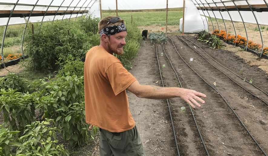 In this Wednesday, Sept. 27, 2017 photo, Tobin Krell walks the garden under the light tunnel where they have planted a fresh crop of herbs at Homestead 1839 in West Burlington, Iowa. Homestead 1839 is a nonprofit organic farm in West Burlington. (John Gaines /The Hawk Eye via AP)