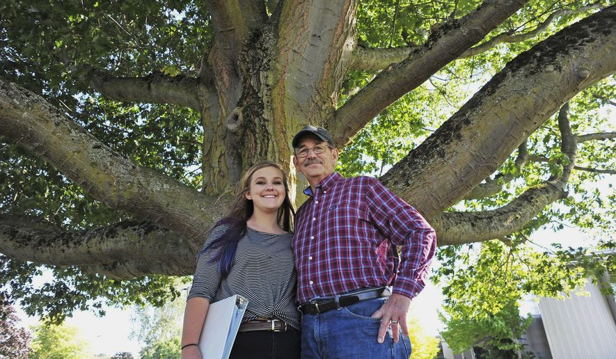In this Sept. 26, 2017, photo, Mount Vernon high school junior Emma Sundance poses for a photo with her father, Rich, under one of the few remaining Elm trees that was originally planted along State Route 536, Memorial Highway, to honor Skagit Valley servicemen who lost their lives in World War I. Emma is organizing a replanting campaign to restore the majestic Elms. (Charles Biles/Skagit Valley Herald via AP)