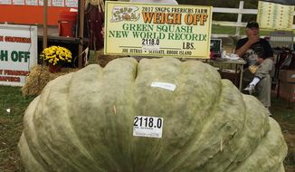 In this Oct. 7, 2017, photo provided by Susan Jutras, Joe Jutras stands with his world record breaking, 2,118-pound squash, following a weigh-in at Frerichs Farm in Warren, R.I. Jutras has become the first grower in the world to achieve a trifecta in the three most competitive categories in the hobby of growing gargantuan foods, having broken world records for largest pumpkin, longest gourd and now, heaviest squash. (Susan Jutras via AP)