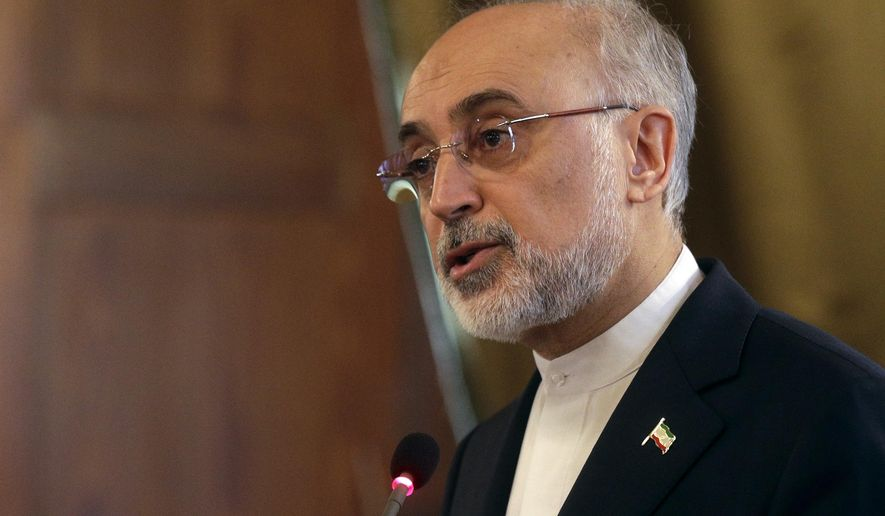 Head of Iran's Atomic Energy Organization Ali Akbar Salehi talks at a conference on international cooperation for enhancing nuclear safety, security, safeguards and non-profileration, at the Lincei Academy, in Rome, Tuesday, Oct. 10, 2017. (AP Photo/Gregorio Borgia)