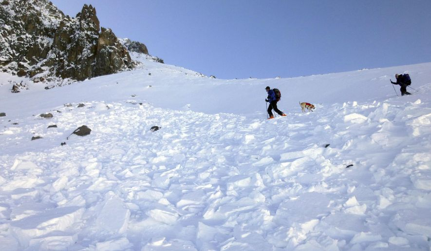 In this Monday, Oct. 9, 2017, photo provided by the The Gallatin National Forest Avalanche Center, search and rescue volunteers, along with an avalanche dog, search debris in an avalanche field for a missing skier on Imp Peak in the southern Madison Range in southwestern Montana. A woman's body was recovered after two skiers triggered the weekend avalanche that fully buried the woman and partially buried a man. (The Gallatin National Forest Avalanche Center via AP)