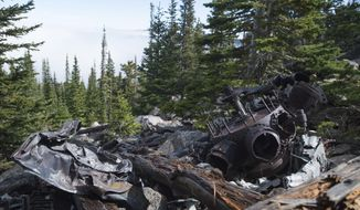 Remnants of an engine for a B-17 bomber aircraft sit along fallen trees above the clouds in Pingree Park on Friday, Sept. 29, 2017. Hikers can find a network of trails leading to the site of the 1943 plane crash.   (Austin Humphreys /The Coloradoan via AP)