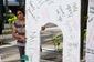 10152017_immigration-protest-miami-28201.jpg