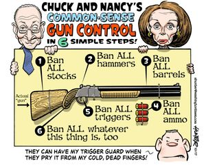 Chuck and Nancy's Common-Sense Gun Control
