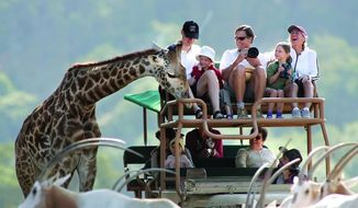 Visitors to Safari West in Northern California experience an African Safari on the West Coast. The most recent wildfires threatened the preserve and its 1,000 animals; however, staff say all animals are accounted for and safe. (Courtesy of Safari West)