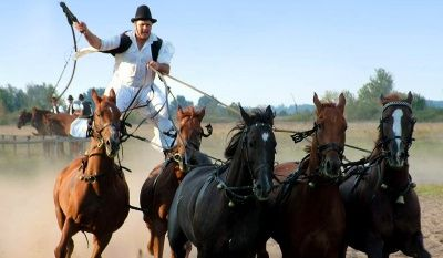 For travelers to Budapest, the equine skill of the Hungarian cowboys, or csikos, which goes back as far as the first Magyar migrations, is a must-see experience.
