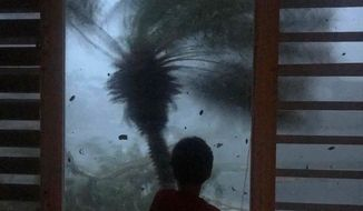 """In this early morning Sept. 20, 2017 photo, a young boy looks out the window as strong winds brought on by Hurricane Maria bend a palm tree and send debris flying, in Juncos, Puerto Rico. As rains began to lash Puerto Rico, Gov. Ricardo Rossello warned that Maria could hit """"with a force and violence that we haven't seen for several generations."""" (AP Photo/Linda Rodriguez Flecha)"""