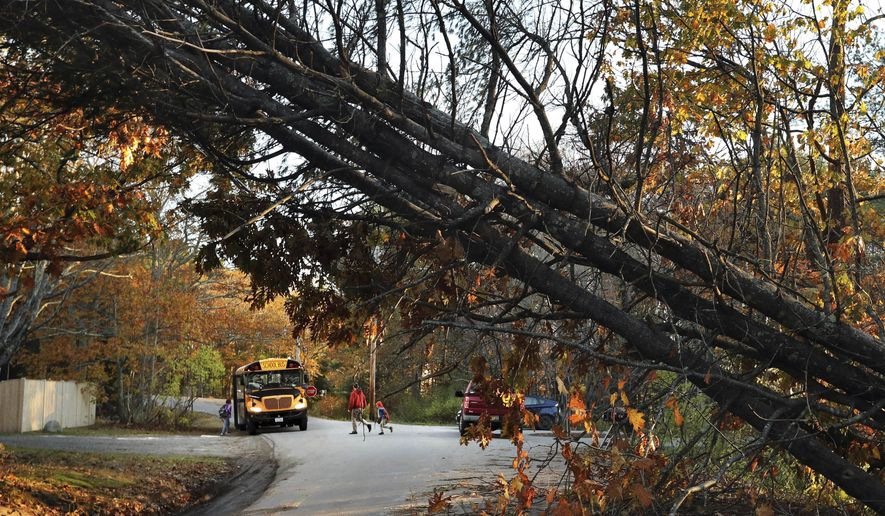 FILE - In this Wednesday, Nov. 1, 2017, file photo, a father walks his child to a school bus at a temporary pick up location, in Freeport, Maine, where storm-toppled trees still made several roads impassable following Monday's storm. High winds brought town trees and limbs and spread debris that may block trails and make roads impassable after the recent storm. (AP Photo/Robert F. Bukaty, File)