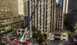 The Rockefeller Center Christmas Tree is raised by a crane as it is positioned at Rockefeller Plaza, in New York, Saturday, Nov. 11, 2017. (AP Photo/Andres Kudacki)