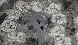FILE- In this Oct. 14, 2017, file photo, an aerial view shows the devastation of the Coffey Park neighborhood after a wildfire swept through Santa Rosa, Calif. A 101-year-old man who told his wife to flee deadly wildfires in Northern California without him last month is the latest victim to be identified by coroners officials. (AP Photo/Marcio Jose Sanchez, File)