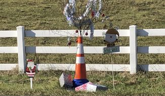 """This photo provided by Bill Suthard shows an orange traffic cone with a weed growing out of it, decorated with tinsel and ornaments in Huntersville, N.C.  The roadside attraction dubbed """"Cone Weed"""" is something of a Christmas miracle to locals. The weed has been growing unencumbered across from the Huntersville Fire Station for a year and has amassed a cult following. The fire station tweeted pictures of Cone Weed decked in tinsel and ornaments last week. (Bill Suthard via AP)"""