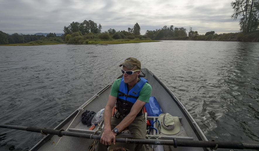 In this Sept. 25, 2017, photo, Joe Moll, of the McKenzie River Trust, holds his boat in an eddy where the McKenzie, left, flows into the Willamette River in Oregon. (Andy Cripe/The Corvallis Gazette-Times via AP)