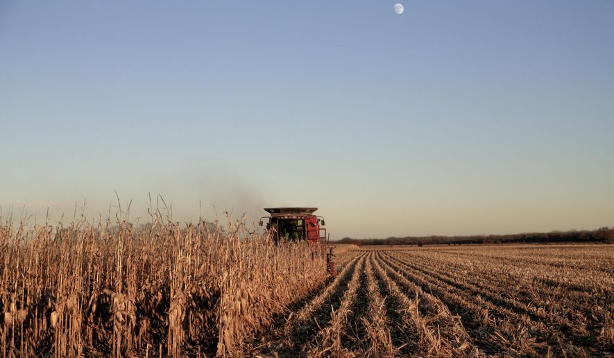 Corn is harvested near Schyler, Neb., Thursday, Nov. 30, 2017, in this file photo. A survey of bankers in rural parts of 10 Plains and Western states released in October 2019 showed an improved rural economy this month. (AP Photo/Nati Harnik) **FILE**