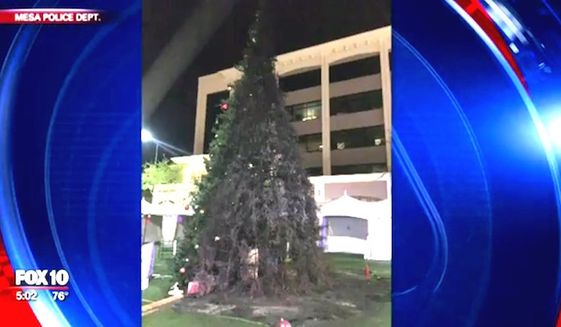 "Arizona police arrested a man Dec. 13, 2017, after Mesa's annual ""Merry Main Christmas Tree"" was set ablaze. (Image: Fox-10 Arizona screenshot)"