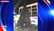 "Arizona police arrested a man Dec. 13, 2017, after Mesa's annual ""Merry Main Christmas Tree"" was set ablaze. (Image: Fox-10 Arizona screenshot)"