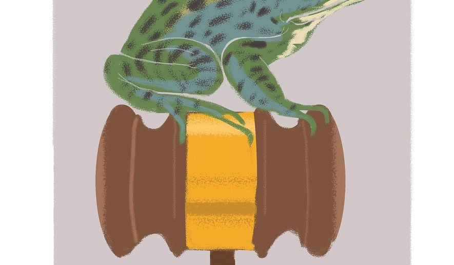 Illustration of the Mississippi Gopher Frog by Linas Garsys/The Washington Times